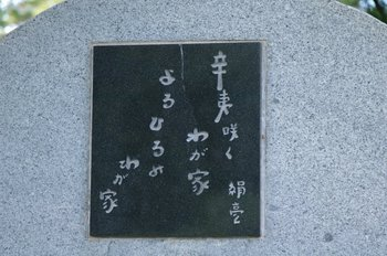 1-IMGP6954.JPG