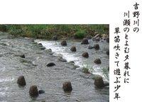 22-17 吉野川の.jpg