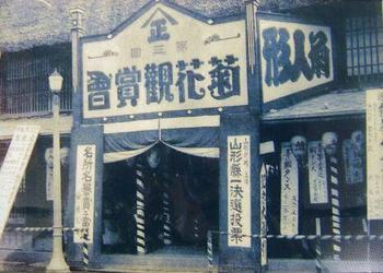 「南陽の菊まつり」百年.山正.jpg