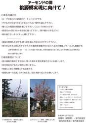 アーモンド苗木の植え方.jpg