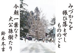 19-8今朝一葉なき.jpg