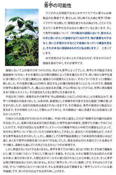 青苧フェスチラシA4たて_裏面 [更新済み].jpg