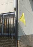 黄色い旗2-DSCF5417.jpg